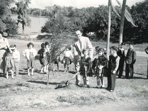 Tu B'shevat, 1953